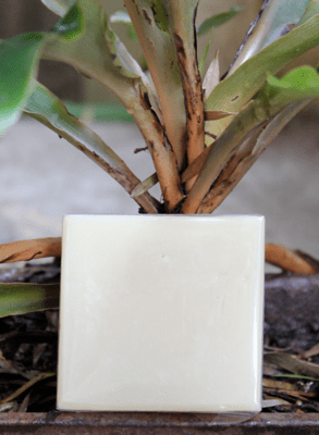 Coconut oil and Shea butter Plain-Natural Soap